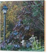 Garden Lamp Post Wood Print