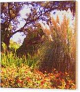 Garden Landscape Wood Print
