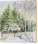 Garden Landscape Winter Wood Print