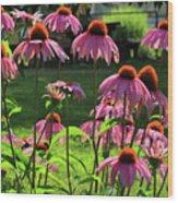 Garden Of Cones Wood Print
