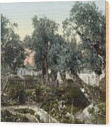 Garden Of Gethsemane Wood Print