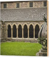 Garden Of Iona Abbey2 Wood Print