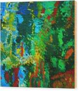 Garden Of Possibilities Wood Print by Lorna Ritz