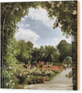 Garden Of Roses Wood Print