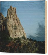 Garden Of The Gods 15 Wood Print