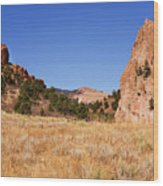 Garden Of The Gods View Wood Print