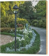 Garden Path #1 Wood Print