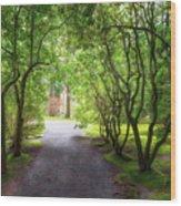 Garden Path In Spring Wood Print
