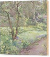 Garden Path Wood Print by Mildred Anne Butler