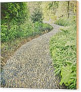 Garden Path - Photography Wood Print