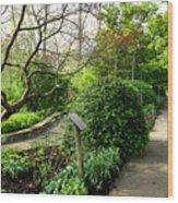 Garden Paths Wood Print