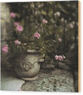Garden Planter Wood Print