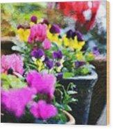Garden Plants Wood Print