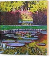 Garden Ponds - Tower Grove Park Wood Print