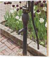 Garden Pump From The Old Days Wood Print