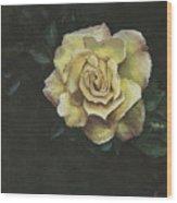 Garden Rose Wood Print by Jeff Brimley