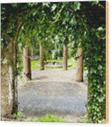 Garden Ruins Wood Print
