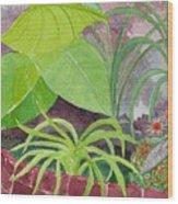 Garden Scene 9-21-10 Wood Print