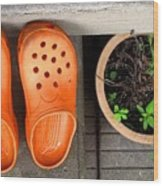Garden Shoes Wood Print