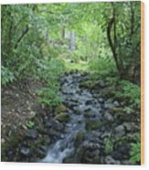 Garden Springs Creek In Spokane Wood Print