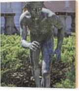Garden Statue Ringling Museum  Wood Print