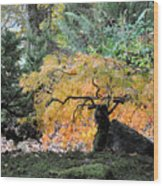 Garden Tapestry Wood Print