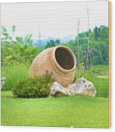 Garden With Amphora. Wood Print