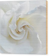 Gardenia Macro Wood Print
