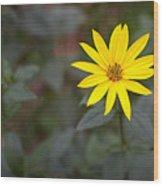 Gardening Melody Wood Print