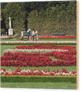 Gardens Of The Schloss  Schonbrunn  Vienna Austria Wood Print