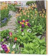Gardens Of Tulips Wood Print