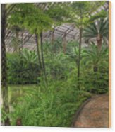 Garfield Park Conservatory Pond And Path Chicago Wood Print