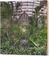 Garfield Park Conservatory Reflecting Pool Wood Print