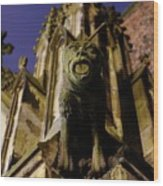 Gargoyle At The Dom Church In Utrecht In The Evening 188 Wood Print