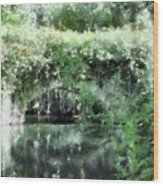 Garlands And Arches Wood Print
