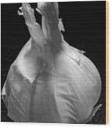 Garlic Bulb B W Wood Print