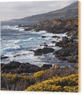 Garrapata Beach In Big Sur Wood Print