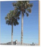 Garrita And Palms At The Fort Wood Print