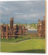 Gas Works Park In Seattle Washington Wood Print