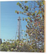 Gasparilla Lighthouse Wood Print