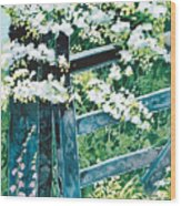 Gate And Blossom Wood Print