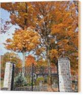 Gate And Driveway 3 Wood Print