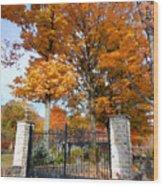 Gate And Driveway Wood Print