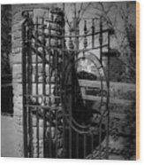 Gate In Macroom Ireland Wood Print