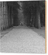 Gated Path Wood Print