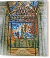 Gates To Knowledge Princeton University Wood Print