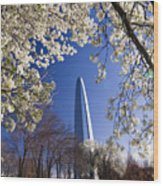 Gateway Arch With Cherry Tree In Bloom. Wood Print