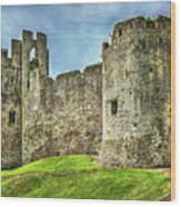 Gateway To Chepstow Castle Wood Print