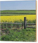 Gateway To Golden Fields Wood Print