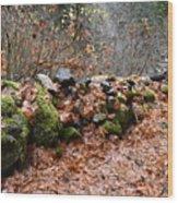 Gather No Moss Wood Print